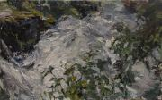 Cascades_from_above___30x22___2011_Oil_lq.jpg